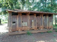 Photograph of dilapidated latrines at Kariguini primary school in Kandara Constituency.
