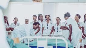 Bachelor of Science Nursing course
