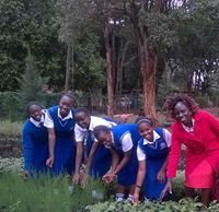 Moi Girls High Kamusinga is a Girls' only boarding school, located in Kibingei location, Bungoma County; within the Western Region of Kenya. Get to know the school's KCSE Results, KNEC Code, contacts, Admissions, physical location, directions, history, Form one selection criteria, School Fees and Uniforms. Also find a beautiful collation of images from the school's scenery; including structures, signage, students, teachers and many more. For all details about other schools in Kenya, please visit the link below; SCHOOLS' NEWS PORTAL MOI GIRLS HIGH SCHOOL, KAMUSINGA KCSE RESULTS Individual candidates can check their KCSE results by sending an SMS with their full index number (11digits) followed by the word KCSE. The SMS can be sent from any subscriber's line (Safaricom, Airtel or any other) to 20076. For example, send the SMS in the format 23467847002KCSE to 20076. There should be no space left between the index number and the word KCSE. One can also download the whole school's KCSE results by Visiting the Official KNEC exams portal; https://www.knec-portal.ac.ke/. This one requires the school's log in credentials. Finally, candidates can visit the school for their results. This is usually a day after the results have been released. It is important that you check your result slip to ensure there are no errors on it. Be keen to see that details such as your name, index number and sex are accurate. In case of any discrepancy, please notify your principal or KNEC immediately for correction. MOI GIRLS HIGH SCHOOL, KAMUSINGA KCSE PERFORMANCE ANALYSIS/ GRADES COUNT The school has maintained a good run in performance at the Kenya National Examinations Council, KNEC, exams. In the 2019 Kenya Certificate of Secondary Education, KCSE, exams the school posted good results to rank among the best schools in the County with a mean score of 5.965 (C plain). This is how and where you can receive the KCSE results. Moi girls kcse analysis Here are some of the 2019 KCSE examination top 