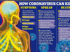 Corona Virus, Covid 19 disease, Countries with Corona Virus