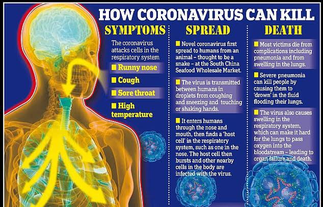 Corona Virus, Covid 19 disease, Countries with Corona Virus