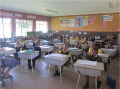 Details of the free schools' desks programme 2020/2021.