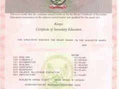 A KCSE Certificate.