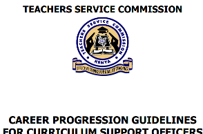 Career Guidelines For Curriculum Support Officers.
