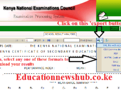 Download KCSE results for the whole school