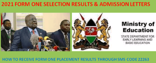 How to get 2021 form one selection results online and via SMS code 22263