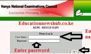 Knec result slips online