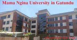 Mama Ngina University.
